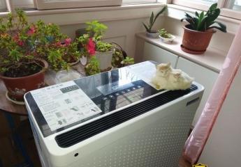 【金测评】安美瑞X8宠物版空气净化器评测:和宠物伙伴可以更亲密
